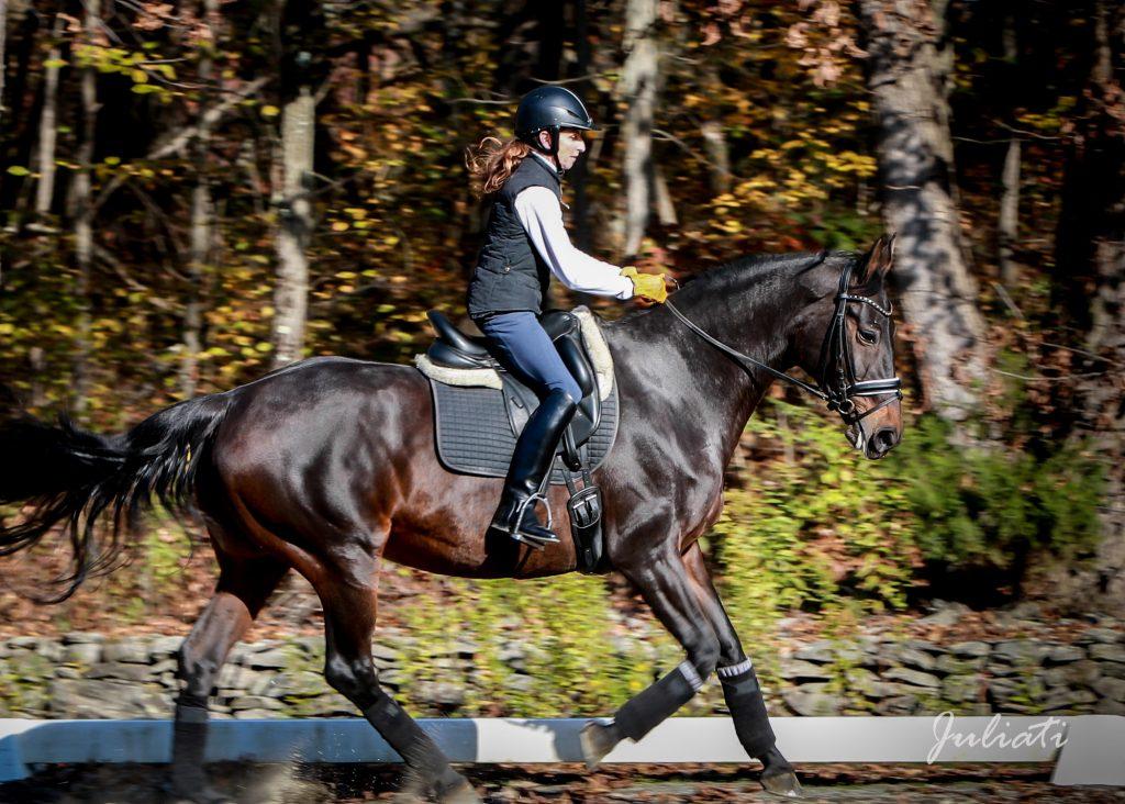 horse-riding-photography-westchester-ny-farm-fairfield-ct-julia-juliati-photographer